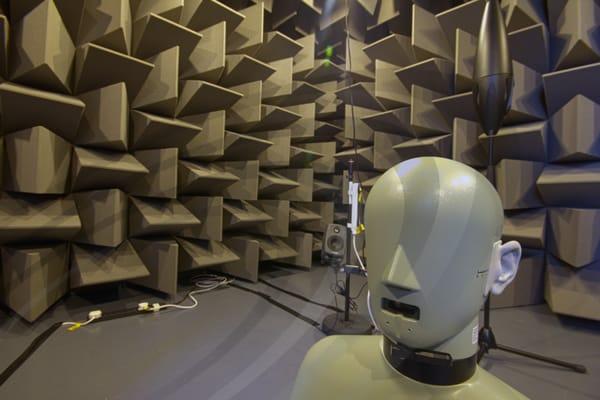 IAC Acoustics hemi anechoic chamber wedges